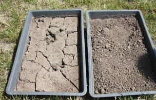 Natrium nadelig voor bodemstructuur