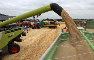 Meer+concurrentie+voor+EU+op+graanmarkt