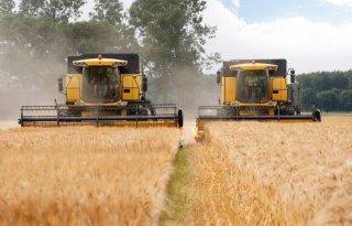 340.000 euro voor jonge boeren in Flevoland