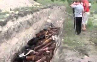 Rusland verbrandt varkens levend