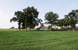 'Gelderland moet erfcoaches zelf aanstellen'