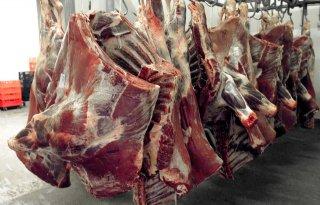 Rabobank: einde daling rundvleesprijzen