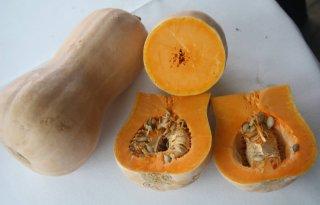 'Markt voor butternut pompoen'
