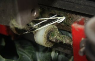 Naaimachine in bloemkool