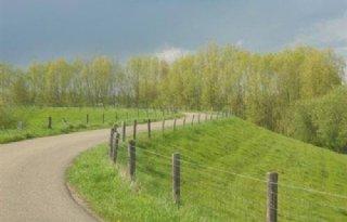 Rivierenland+start+uitgifte+dijkhellingen