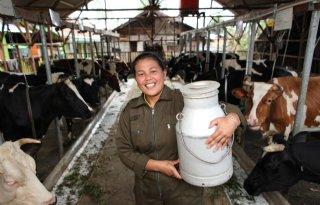 RFC+en+Rabo+helpen+Indonesische+boer
