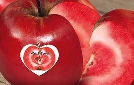 Appels+met+rood+vruchtvlees+geveild