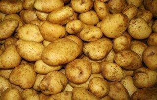 Duitser koopt minder aardappelen