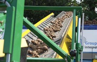 Kleine dip in aardappelverwerking