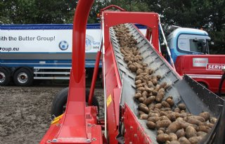 Aardappeloogst gelijk aan vorig jaar