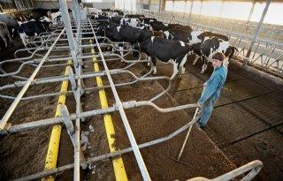Subsidie meten uitstoot ammoniak