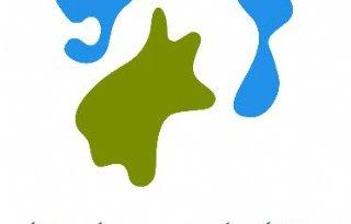 Lokale partijen verkiezingen Hollandse Delta