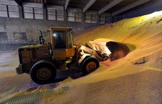 Graan en suiker lijden onder olieprijs
