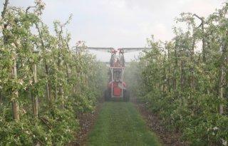 Export groente en fruit naar record