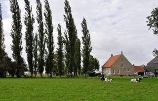 Ton subsidie Nieuwe Zeeuwse Zilte Kansen