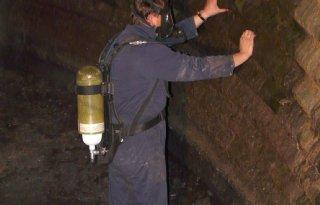 LTO pakt aanbevelingen mestgassen op