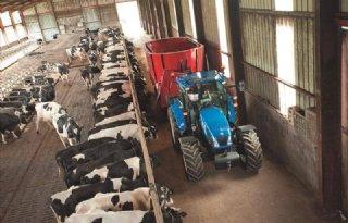 'Spaanse melkveehouder moet stoppen'