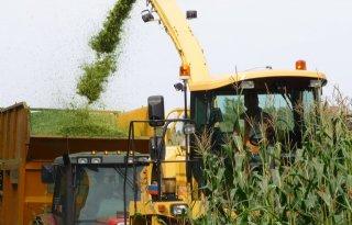 Graanvoorraad EU stijgt bijna 15 miljoen ton