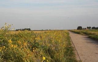 Zorg+over+agrarisch+natuurbeheer+Flevoland
