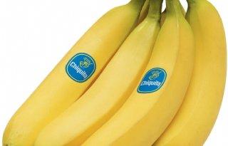 Chiquita verwerpt overnamebod