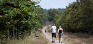 Miljoenen in Gelderse natuur en landschap