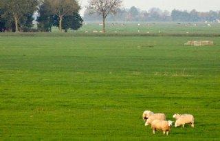 Boerenerven verfraaien Mastenbroek