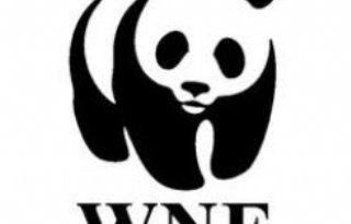 WNF%3A+diervoederindustrie+blijft+achter