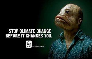 'Niet te laat om opwarming aarde te stoppen'