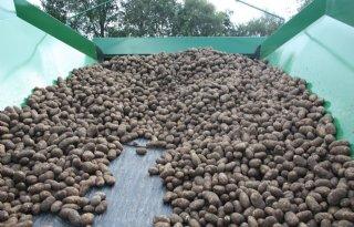 Geen herstel aardappeltermijnmarkt