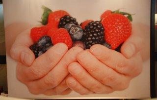 Lichte groei areaal fruit
