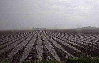 Plaatselijk zware regenbuien in Flevoland