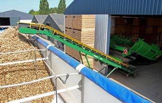 Aardappelexport draait op Afrika