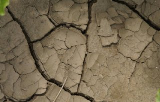 Zuidwesten plaatselijk erg droog