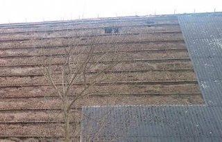 Noord%2DHolland+wil+meer+asbest+van+daken