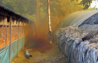 Giftige+gassen+uit+graskuilen