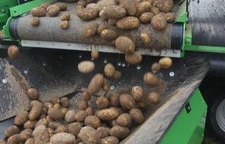 Aardappelverwerking+bijna+3%2C7+miljoen+ton