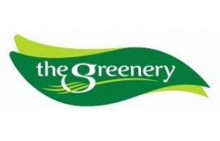 Vereenvoudiging+bedrijfsmodel+The+Greenery
