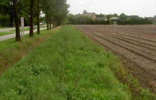 Provincie+Drenthe+steunt+pilot+biovergisting