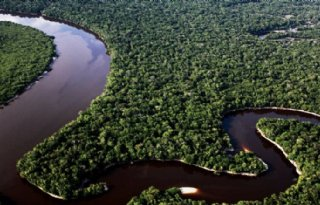 60+miljoen+hectare+Amazone+beschermd