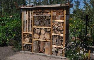 Ruim honderd bijenhotels in Nederland