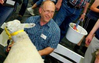 Swifter ooi mooiste schaap van Nederland