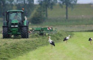 Onderbouwing+van+Nederlands+natuurbeleid+is+nodig