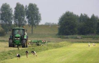 Brabant+ondersteunt+vrijwillige+verplaatsing
