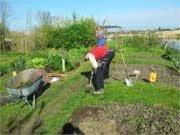 Stadslandbouw in Hoorn van start