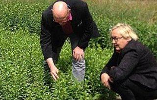 PvdA Westerveld: verbod metam-natrium