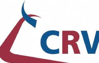 CRV verkoopt helft aandeel ST Brazil