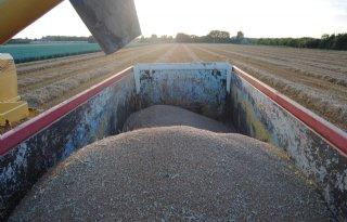 Rusland+komt+met+uitvoerbelasting+tarwe