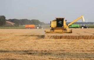 USDA+voorspelt+recordproductie+tarwe