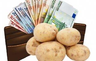 Stabilisatie+termijnprijs+fritesaardappelen