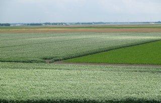 Beoordeling verkaveling Flevoland